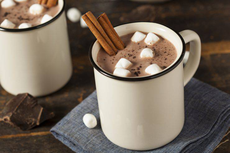 Gourmet Hot Chocolate Milk with Cinnamon and Marshmallows
