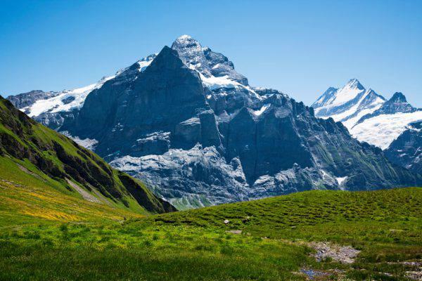 Wetterhorn. Grindelwald, Svizzera (Lucyna Koch, iStock)