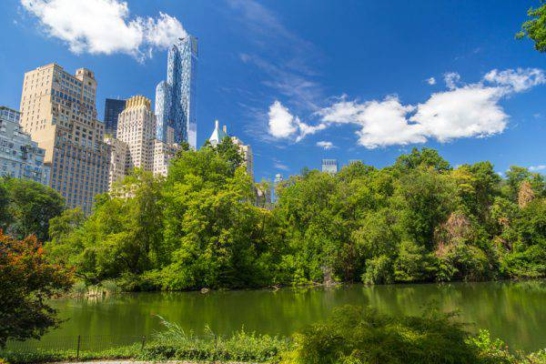 Central Park South (iStock)