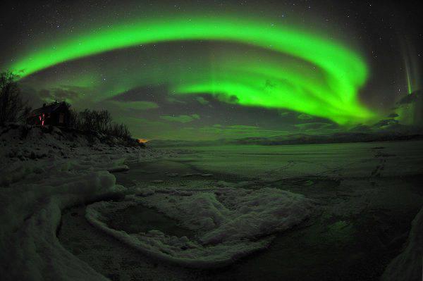 Aurora boreale, Abisko, Svezia (Chad Blakley, CC BY 3.0 de, Wikicommons)