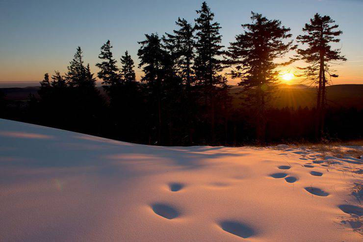 Footprints can be seen in the snow as sun sets behind the Wurmberg mountain near Braunlage in the Harz region, central Germany, on November 29, 2016. / AFP / dpa / Swen Pfoertner / Germany OUT        (Photo credit should read SWEN PFOERTNER/AFP/Getty Images)