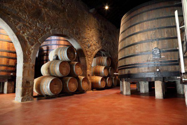 vino Porto Portogallo