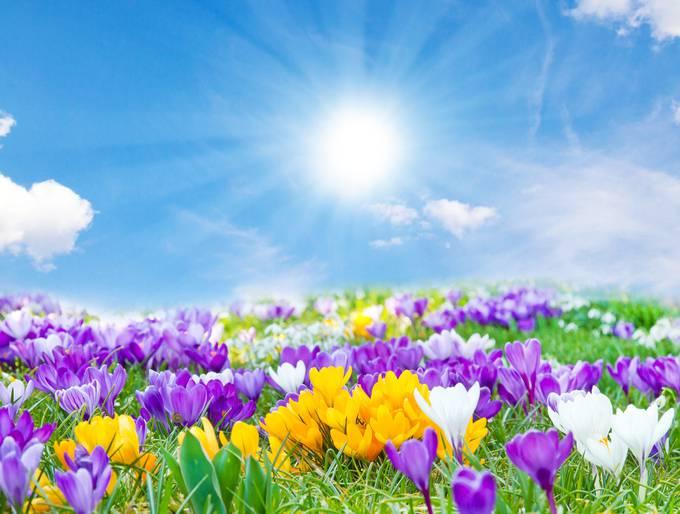 primavera previsioni meteo