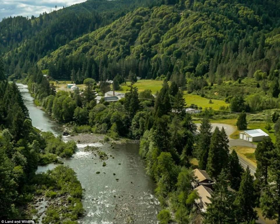 Oregon Town For Sale Amazing Tiller Oregon fonte youtube