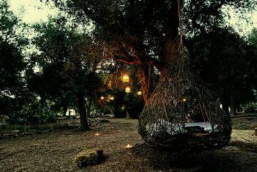 I nidi del parco paduli fonte greenme