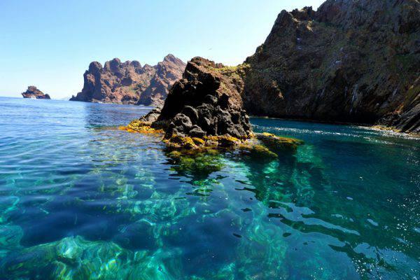 corsica escursioni barca