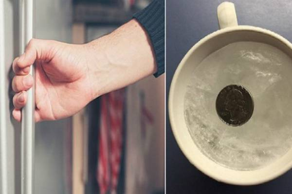 Moneta nel frigo fonte newsfidelityhouse