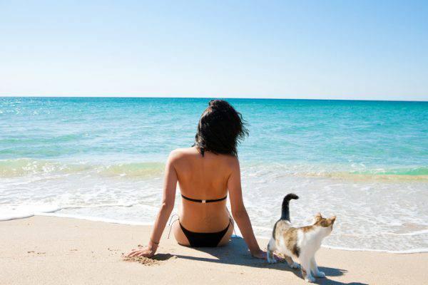 in spiaggia con il gatto