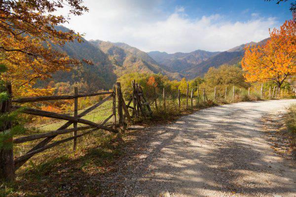 trekking d'autunno