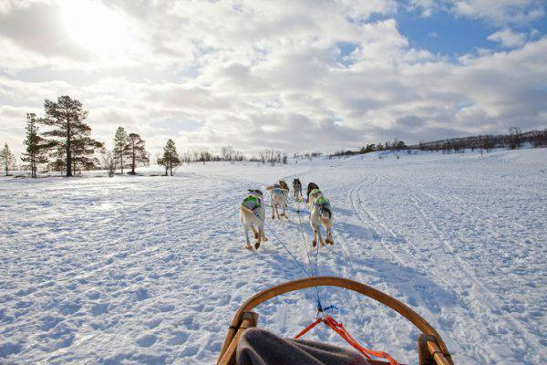 avventura al circolo polare artico