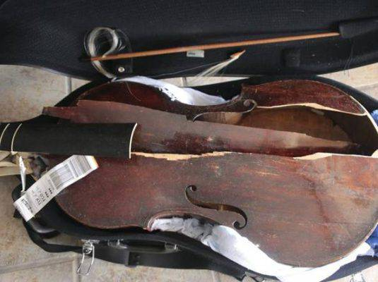 viola-distrutta-alitalia