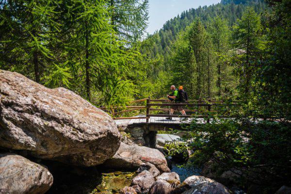 passeggiate-natura-bosco-stress