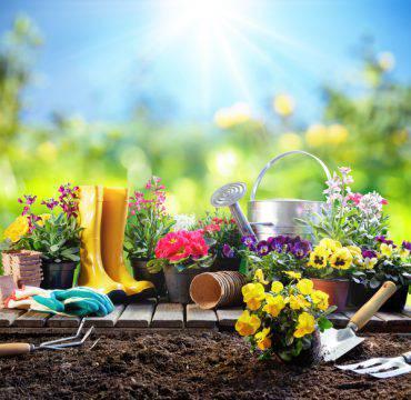 equinozio-primavera-20-marzo-2018-giornata-felicità