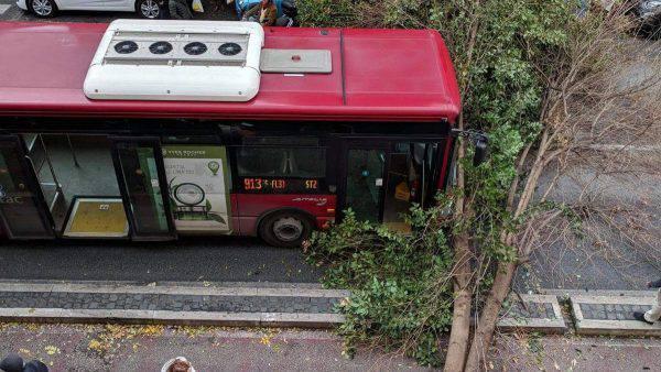 Albero cade a prati su autobus roma