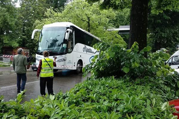 firenze albero caduto turisti