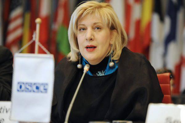 """Il commissario per i diritti umani DunjaMijatović: """"Le Ong hanno un ruolo cruciale"""""""