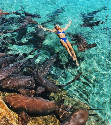 squalo-modella-morso-foto