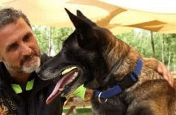 Paura per Raja, il cane eroe che salvò i tre fratellini nel terremoto di Ischia