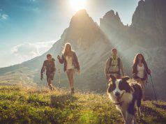 ferragosto-2018-cane-montagna-dove-andare