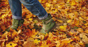 passeggiate-autunno-2018-italia-itinerari