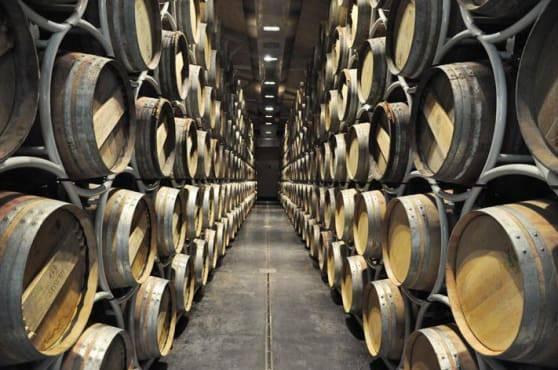 Sassiccaia 2015 miglior vino al mondo