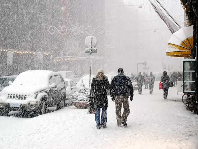 freddo gennaio 2019