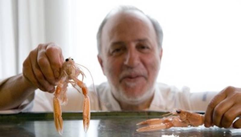 Chef Luciano Zazzeri