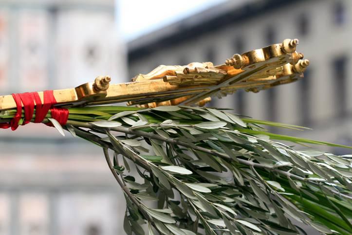 domenica delle palme significato