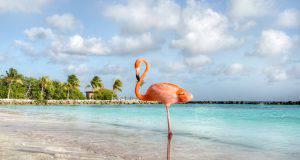 Isole per le vacanze estive 2019