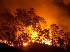 Allerta incendi in Sardegna |  domani giornata ad alto rischio in mezza regione