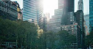 new york clima