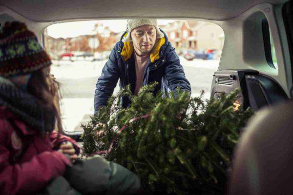 albero-natale-come-trasportare-auto (2)