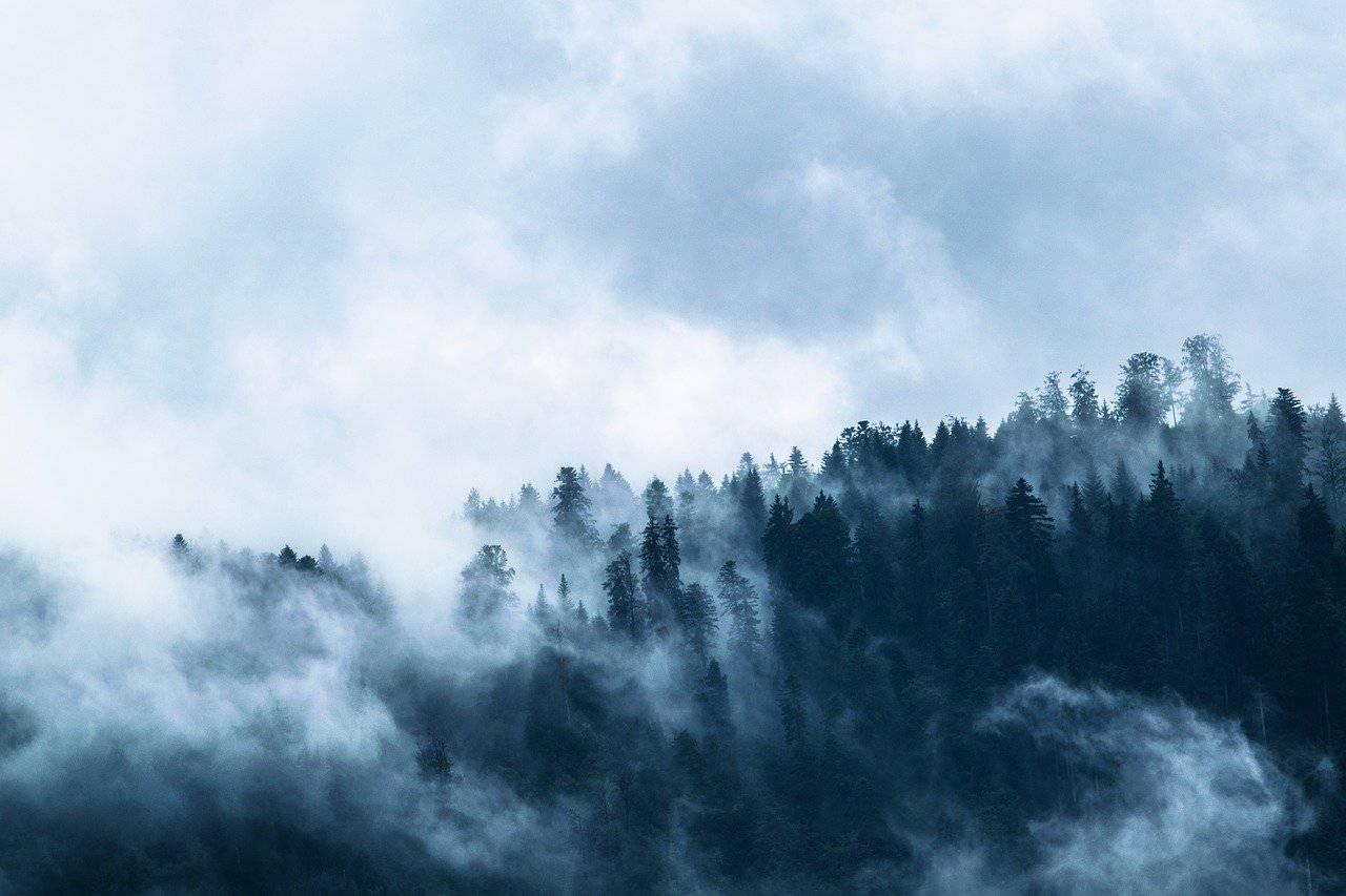 meteo-capodanno-2020-che-tempo-farà-31-dicembre (1)