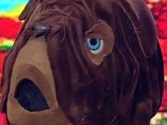 Il Cantante Mascherato: chi è il Mastino Napoletano, gli ind