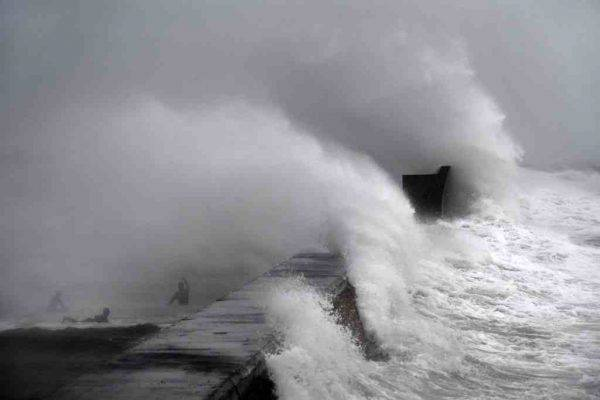 tempesta dennis - photo #7