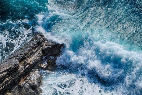 documentari-mare-oceano-netflix-casa-coronavirus (2)