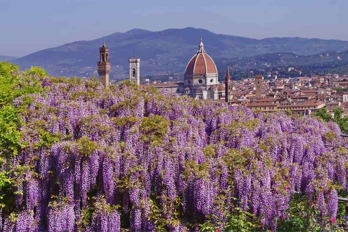 grandi giardini italiani treno