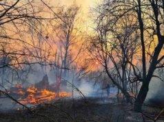 Chernobyl, incendio vicino alla centrale: picco di radiazion