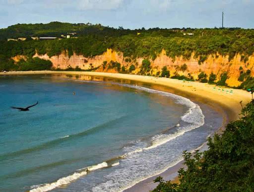 le spiagge migliori del brasile: praia dos golfinhos