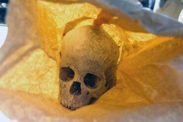 ossa umane ritrovate