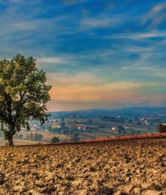 Umbria Itinerolio