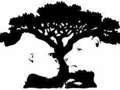 Test psicologico: albero, gorilla o tigre? Ciò che vedi svel