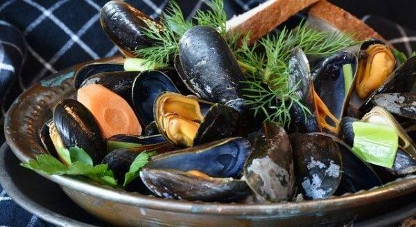 Frutti di mare freschi, come riconoscerli?