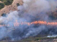 Ancora incendi nel Sannio: caschi rossi in azione sul monte Mutria e ad Apice