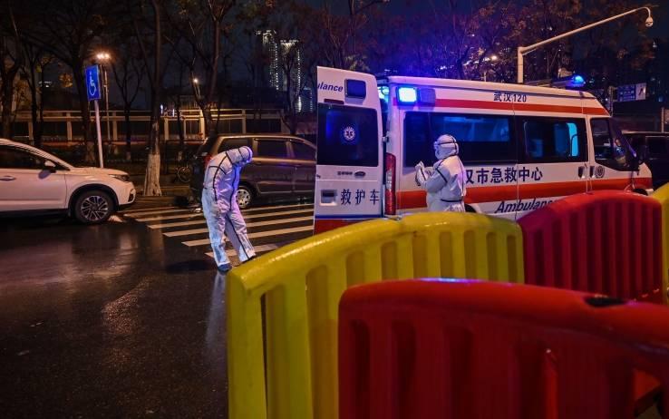 """Peste bubbonica, nuova emergenza in Cina: """"Bimbo di 3 anni positivo"""""""