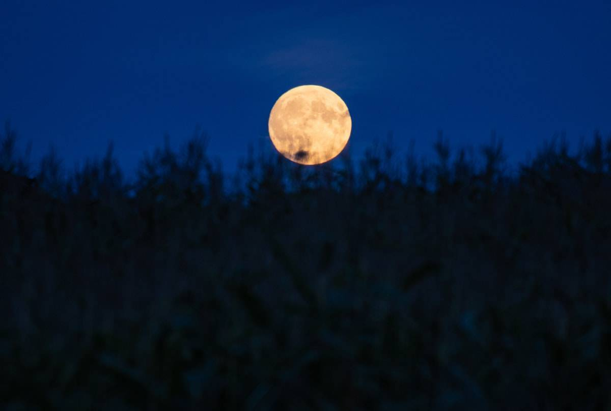 luna piena mais