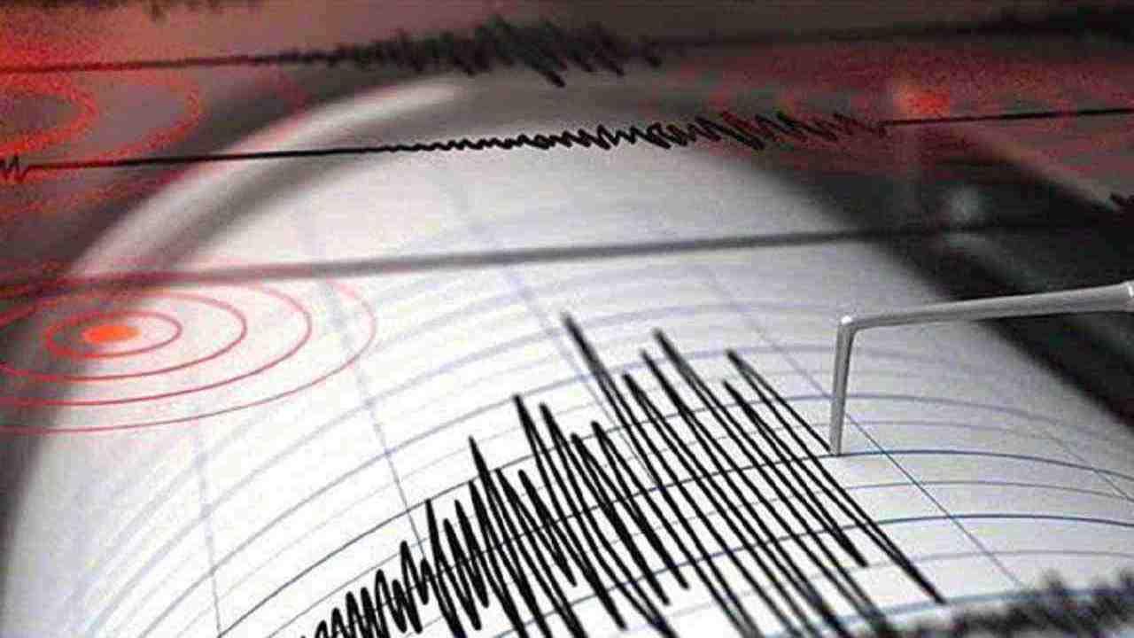 Calabria terremoto scossa