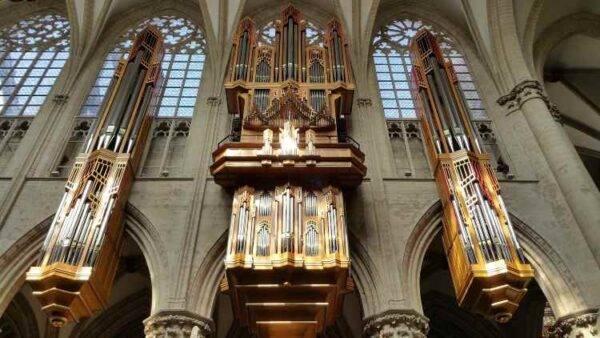 Organo Grenzing Bruxelles 2 giorni