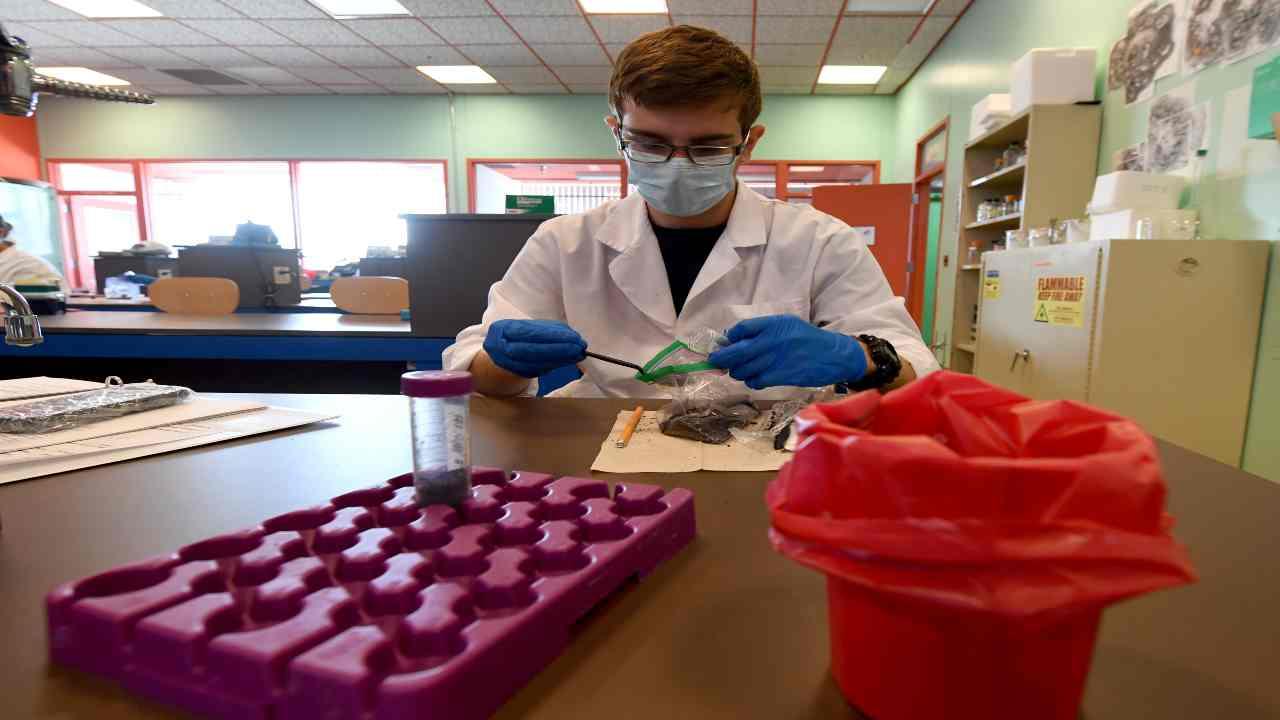 Tampone | test possibili anche negli studi medici | pronte 2 mln di unità
