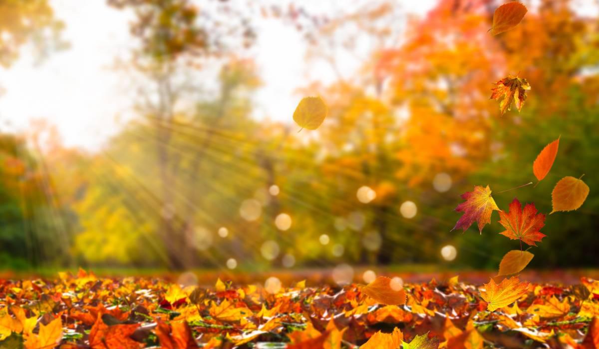 meteo ottobre sole
